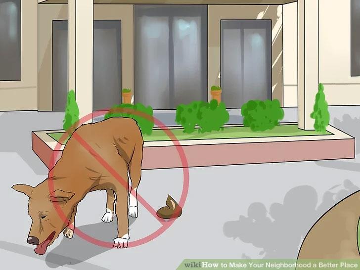 جلوگیری از پرسه آزادانه حیوانات خانگی درمحله