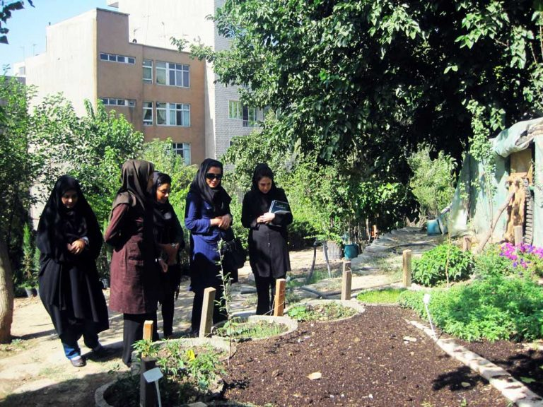 بهتر شدن محله از طریق ارتباط با همسایگان