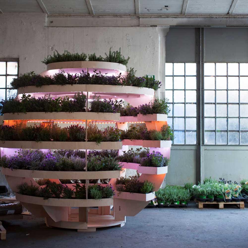 پاویون کروی برای رشد گیاهان